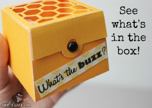 3D Bee Box Surprise at www.joyslife.com