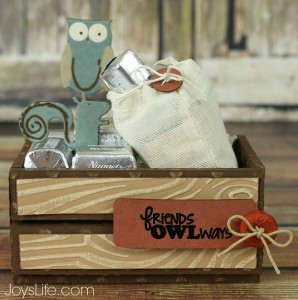 Friends Owlways Faux Wood Crate