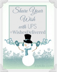 You Know What I Wish?  My UPS  #WishesDelivered Wish