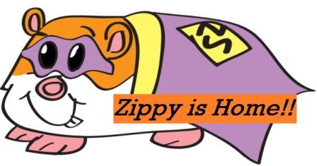 Zippy is Back