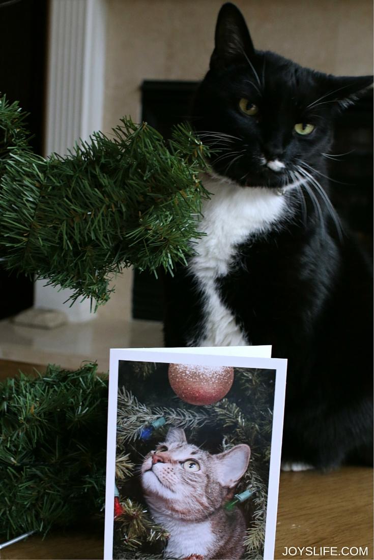 How to Make a Tomato Cage Christmas Tree Card Holder / JoysLife.com