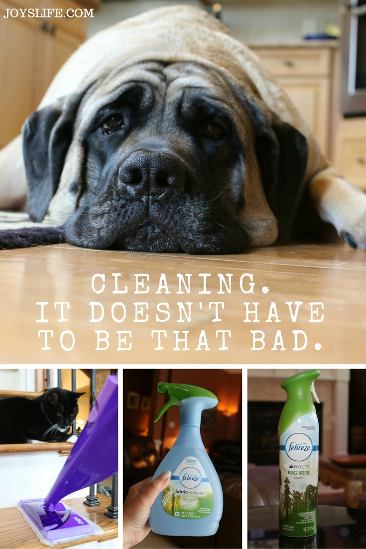 cleaning fall swiffer english mastiff collage