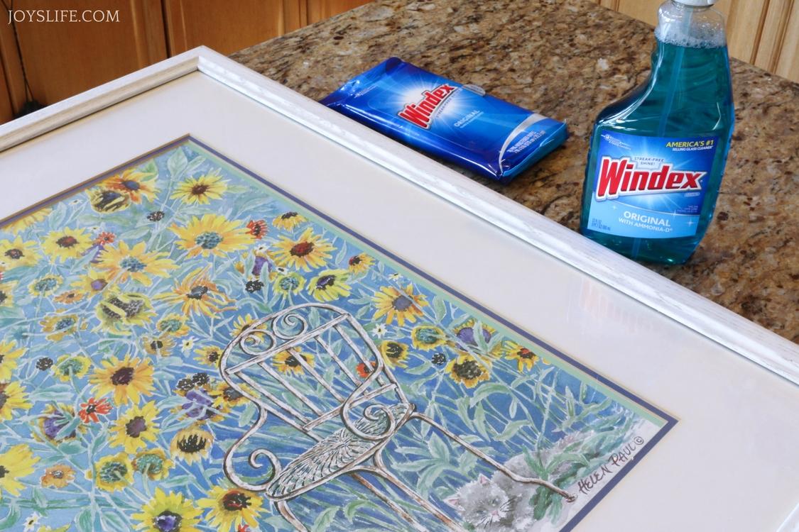 Windex spray wipes
