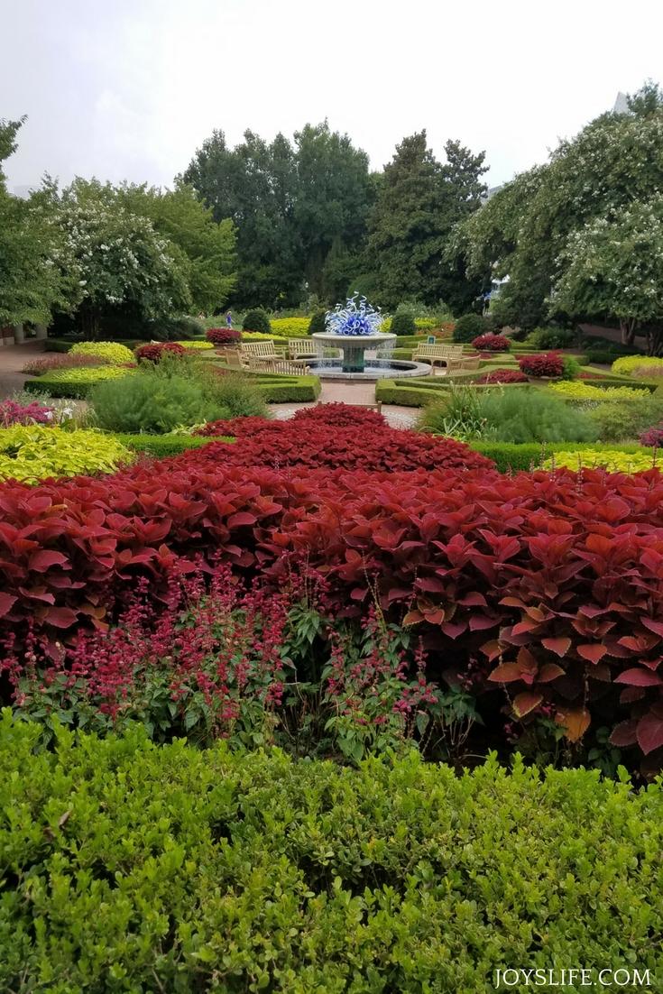 Atlanta botanical gardens in bloom